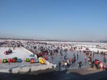 Bumper cars, sleds, ice skating...