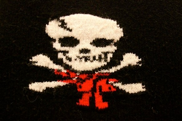 A close up view of my favorite skull sweater -  Photo Credit Lisa Reznik