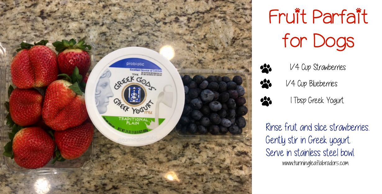 fruit parfait for dogs | Turning Leaf Labs