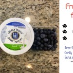 Fruit Parfait for Dogs Recipe and the Benefits of Fruit for Dogs