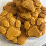 Golden Paste for Dogs in Turmeric Paws
