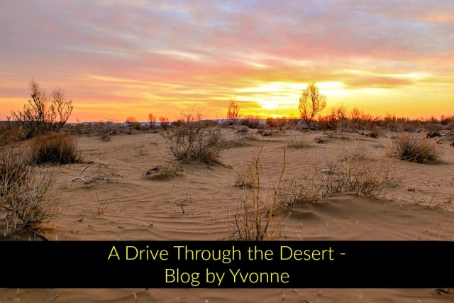 A Drive Through the Desert Blog