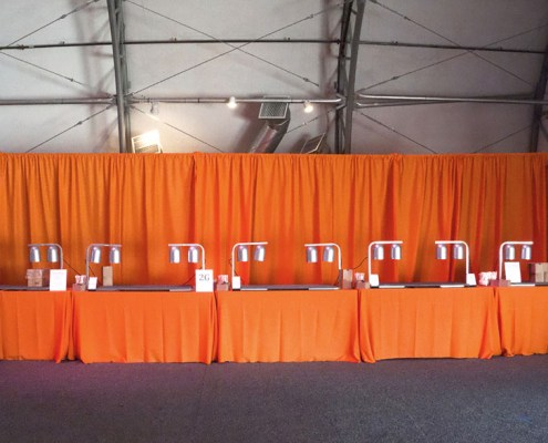 Orange Poly Muslin Drapery With Accent Table Cloths