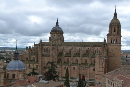 The New Cathedral of Salamanca