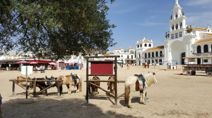 The Ermitas at El Rocio