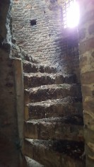 Steps in Cow Tower, Norwich
