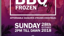 Free BBQ/Frozen Party