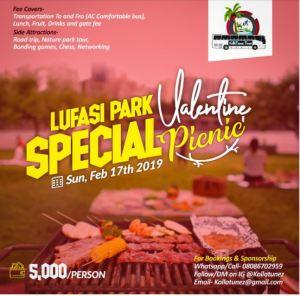 Special Valentine Picnic