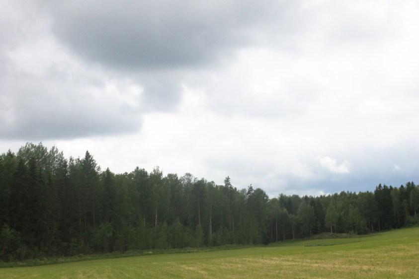 Omakotitalon tontti on hyvä valita mittauksen perusteella. Matalalla sijaitseva, puuston ympäröimä maasto maaseudulla on paras vaihtoehto.