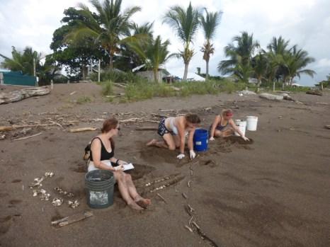 Doing exhumations