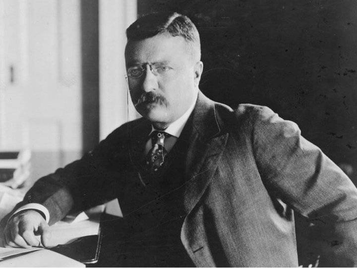 20 Exceptional Facts About Theodore Roosevelt