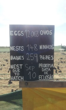 hatchery information