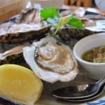 Fyne Oysters