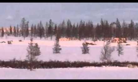 Mobius Eurasian Arctic Challenge 2016 – widok z okien