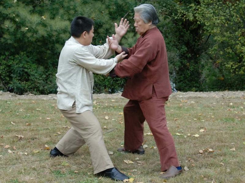 Estilos de kung fu