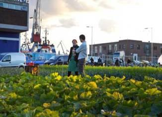 Vallnord apuesta por la ecología y el desarrollo sostenible
