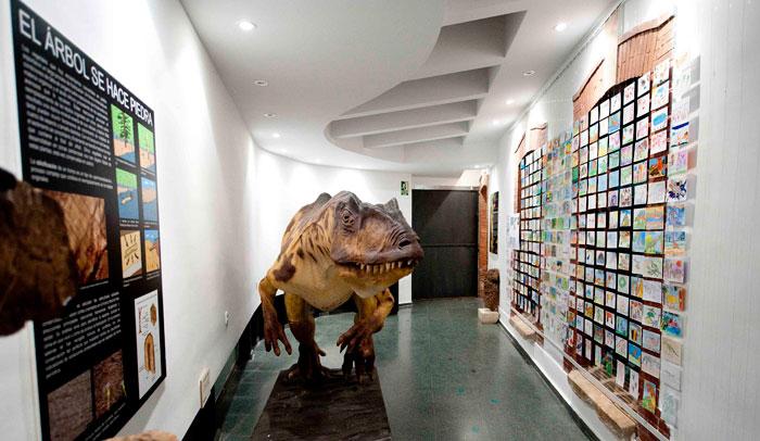 Museo de los Dinosaurios, Salas de los Infantes © Miguel Muñoz Romero
