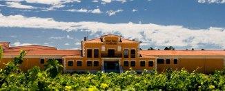 Paisaje de la Ruta del Vino Ribera del Duero