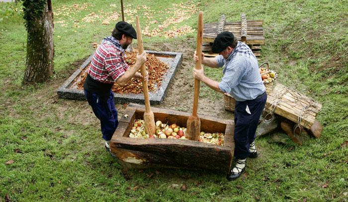 Manzanal del Museo de la Sidra Vasca, Sagardoetxea