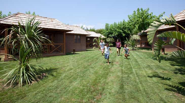 Playa montroig camping de referencia en la costa daurada for Palm tree villas 1