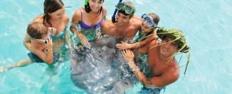 Nadar con mantas raya en familia. © Gregoire Le Bacon