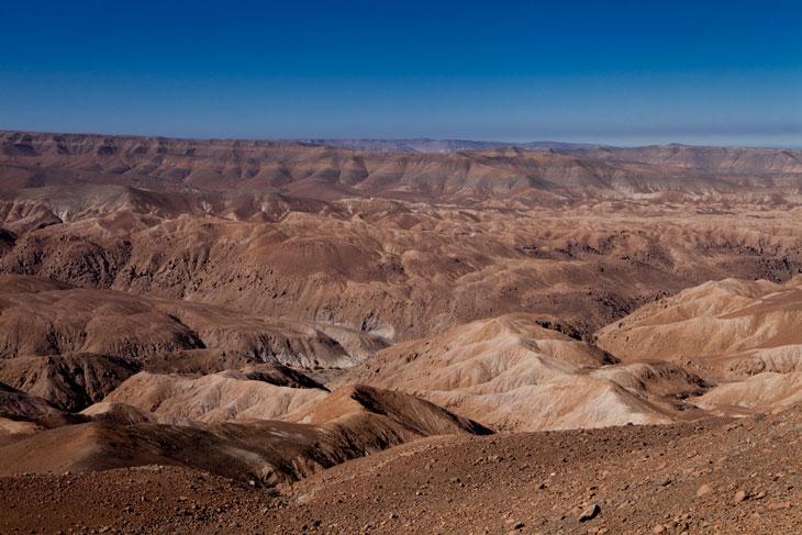 Desierto de la precordillera andina © Ronny Belmar