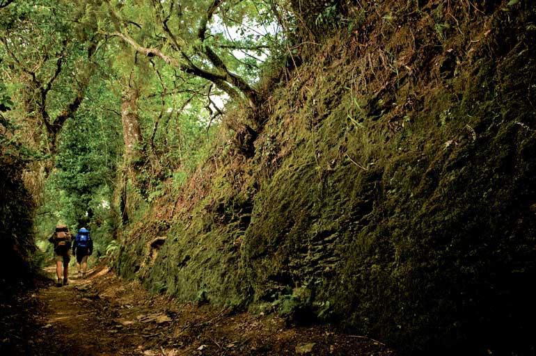 Camino de Santiago a su paso por Lalín