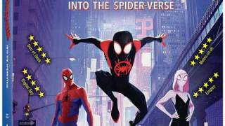 Spider-Man – Into the Spider-Verse (2018) 1080p BluRay x265 HEVC 10bit AAC 5.1 Tigole [MEGA]