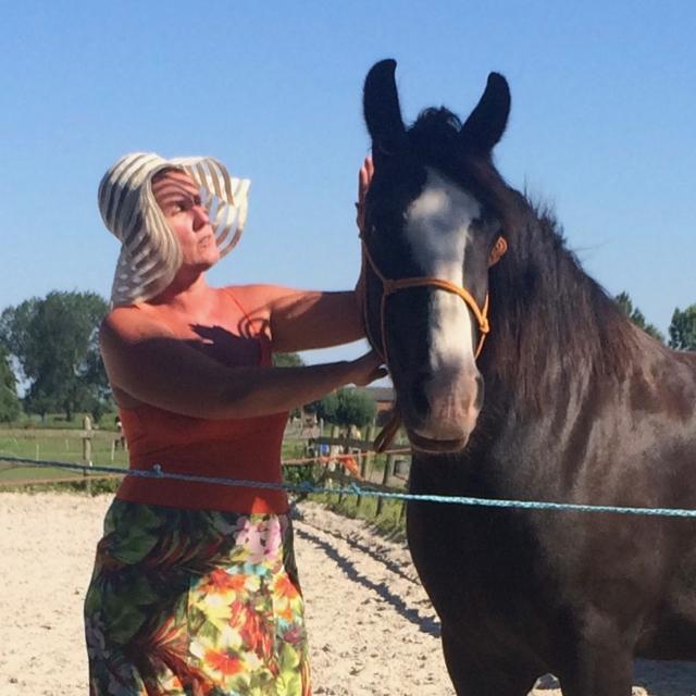 In het contact met een paard maak je contact met jezelf