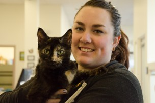 Ashley, Pet Care and Volunteer Coordinator, with one of the cats from the shelter.