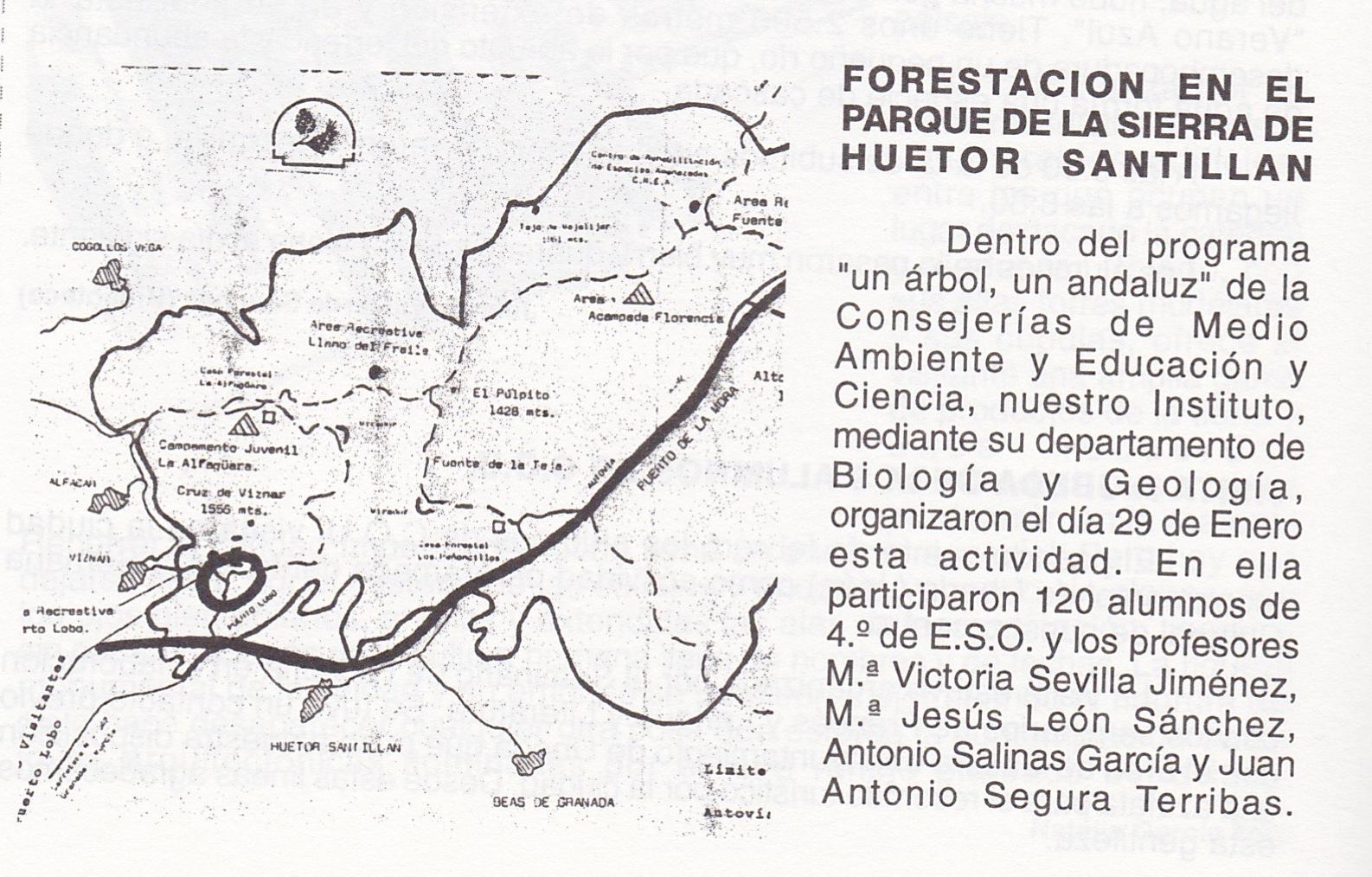 Forestacion1