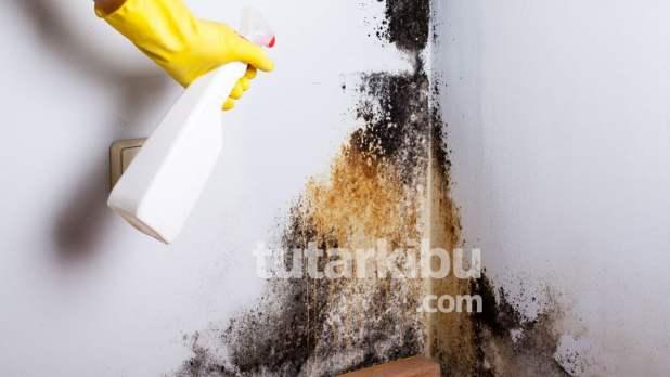 Beyaz sirke karışımıyla rutubet lekelerini temizleme