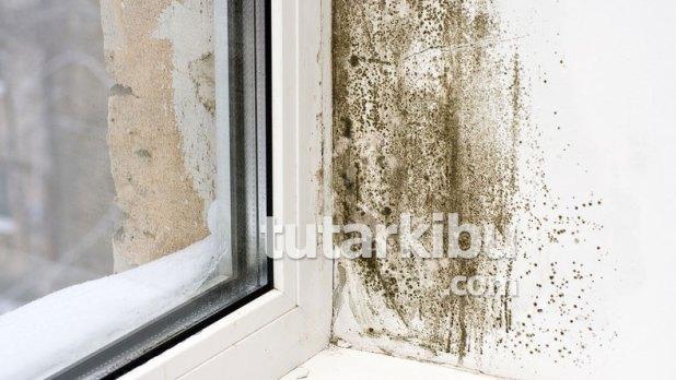 Pencere kenarlarındaki rutubet nasıl temizlenir?
