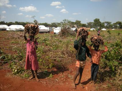 Children collect firewood in Nyarugusu refugee camp, Tanzania, among the tents for newly arrived refugees. Photo by Barbara Borst