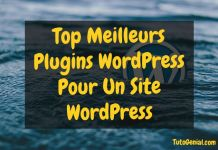 Top 20 Meilleurs Plugins WordPress Pour un Site Wordpress