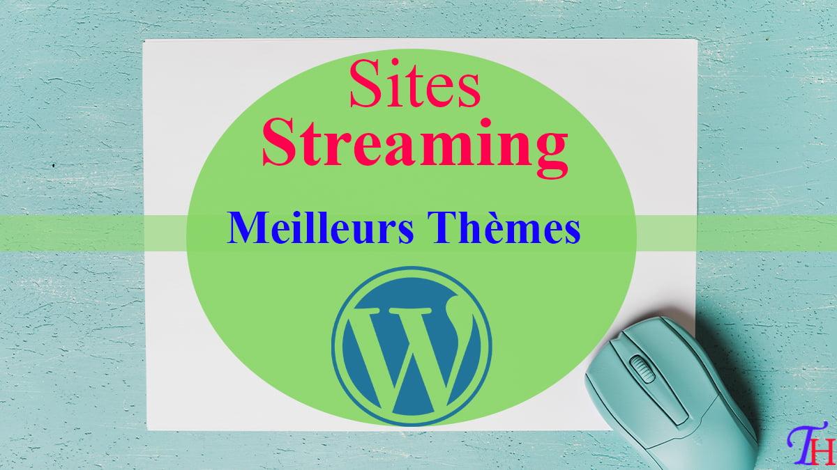 Les Meilleurs Themes pour un Site de Streaming