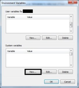Add System Variables