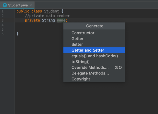 Java Encapsulation generate getter and setter vairable