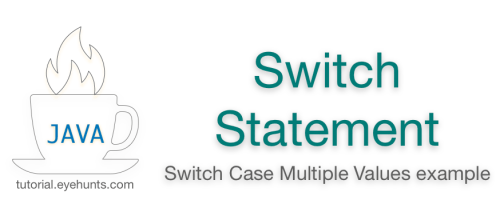 Java Switch Statement | Switch Case Multiple Values example