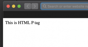 HTML Paragraph tag example output