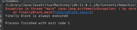 Java try finally without a catch block