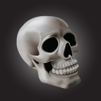Using Meshes to Create a Detailed Skull With Adobe Illustrator