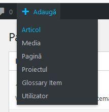 adaugarea-unui-articol-in-wordpress-3