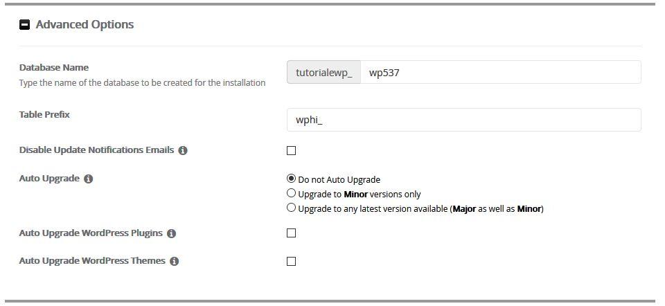 cum-se-instaleaza-wordpress-din-cpanel-9