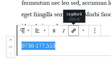 numar-telefon-clicabil-wordpress-1