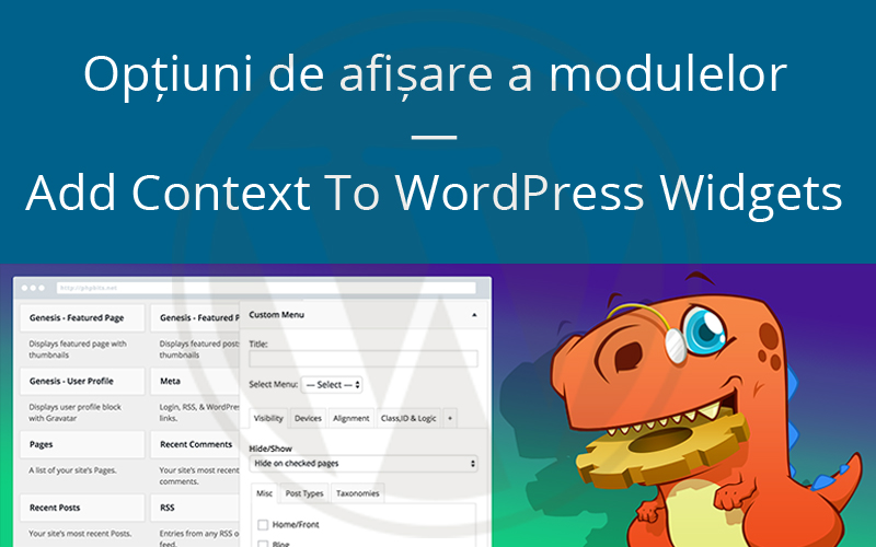 Opțiuni de afișare a modulelor — Add Context To WordPress Widgets