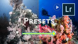 how to create a custom lightroom preset preview