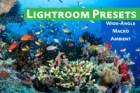 underwater editing presets