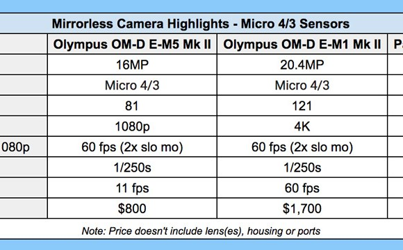 mirrorless-camera-comparison-for-underwater-photography