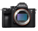 sony-a7r-iii-camera-for-underwater-photography